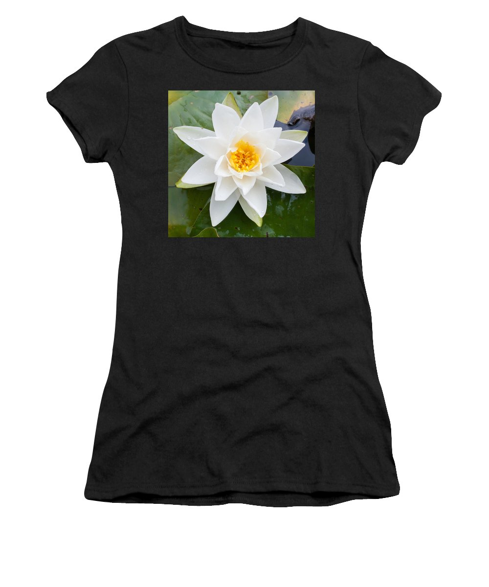 Asian Women's T-Shirt (Athletic Fit) featuring the photograph Water Lily by Semmick Photo