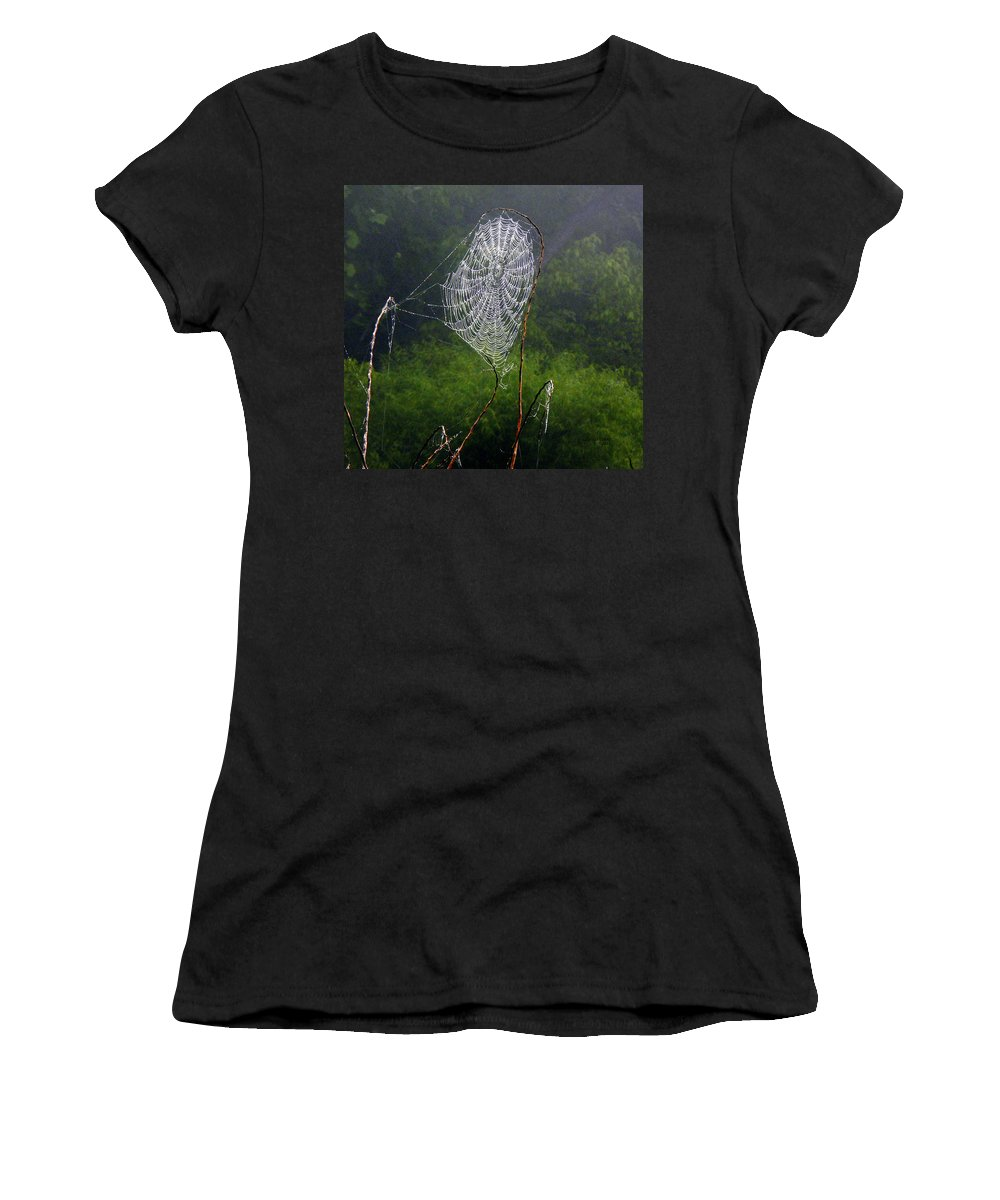 Web Women's T-Shirt (Athletic Fit) featuring the photograph Web Over Foggy Lake by Ericamaxine Price