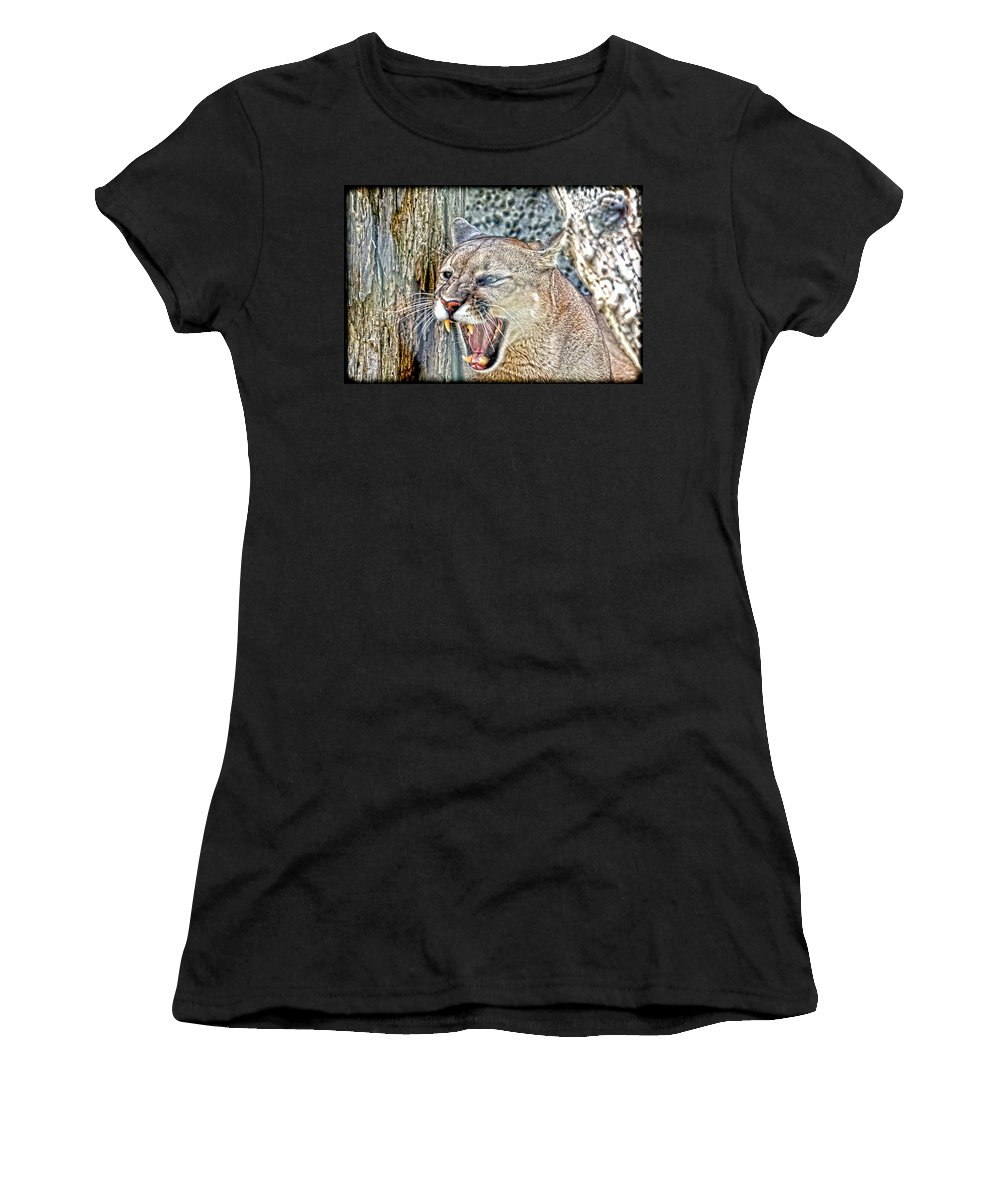 Cougar Women's T-Shirt featuring the photograph Western Cougar by Steve McKinzie