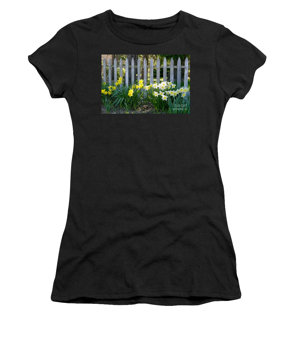Spring Women's T-Shirt featuring the photograph White And Yellow Daffodils by Matt Suess