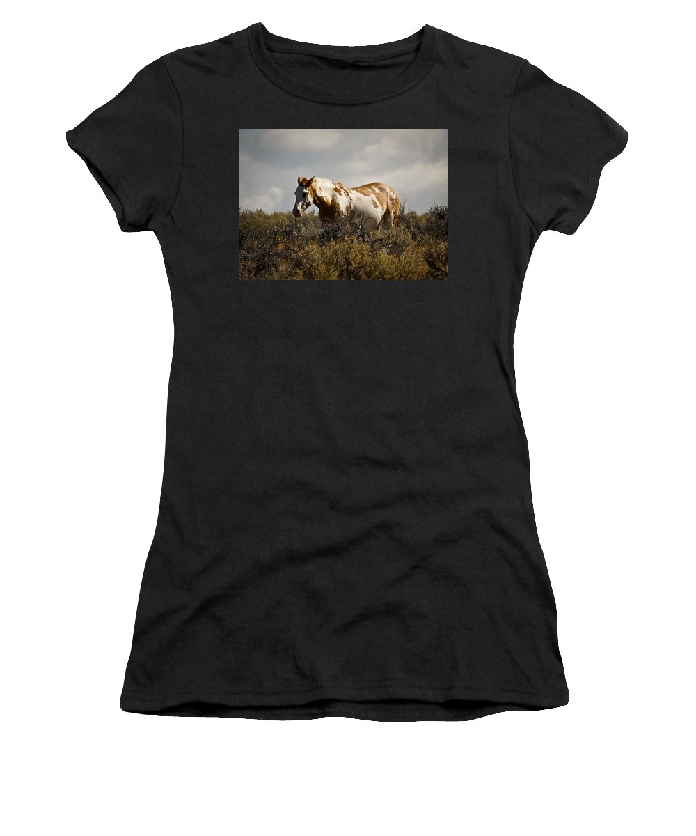 Stallion Women's T-Shirt (Athletic Fit) featuring the photograph Wild In Oregon by Steve McKinzie