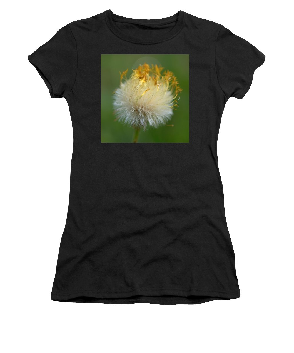 Lehtokukka Women's T-Shirt (Athletic Fit) featuring the photograph Coltsfoot B2 by Jouko Lehto