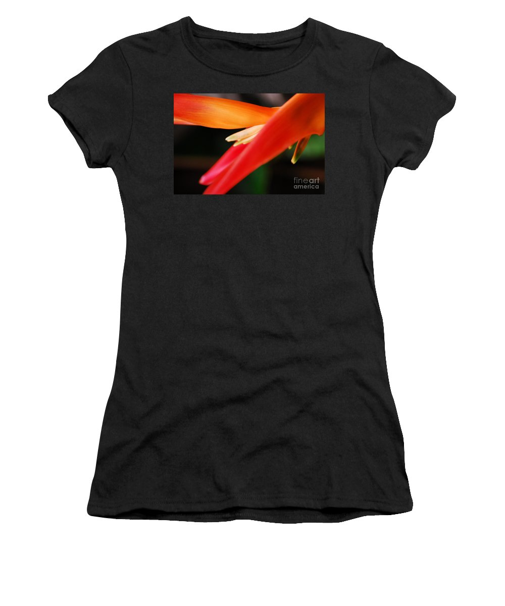 Fine Art - Bird Of Paradise Women's T-Shirt featuring the photograph Fine Art - Bird Of Paradise by Jenny Potter