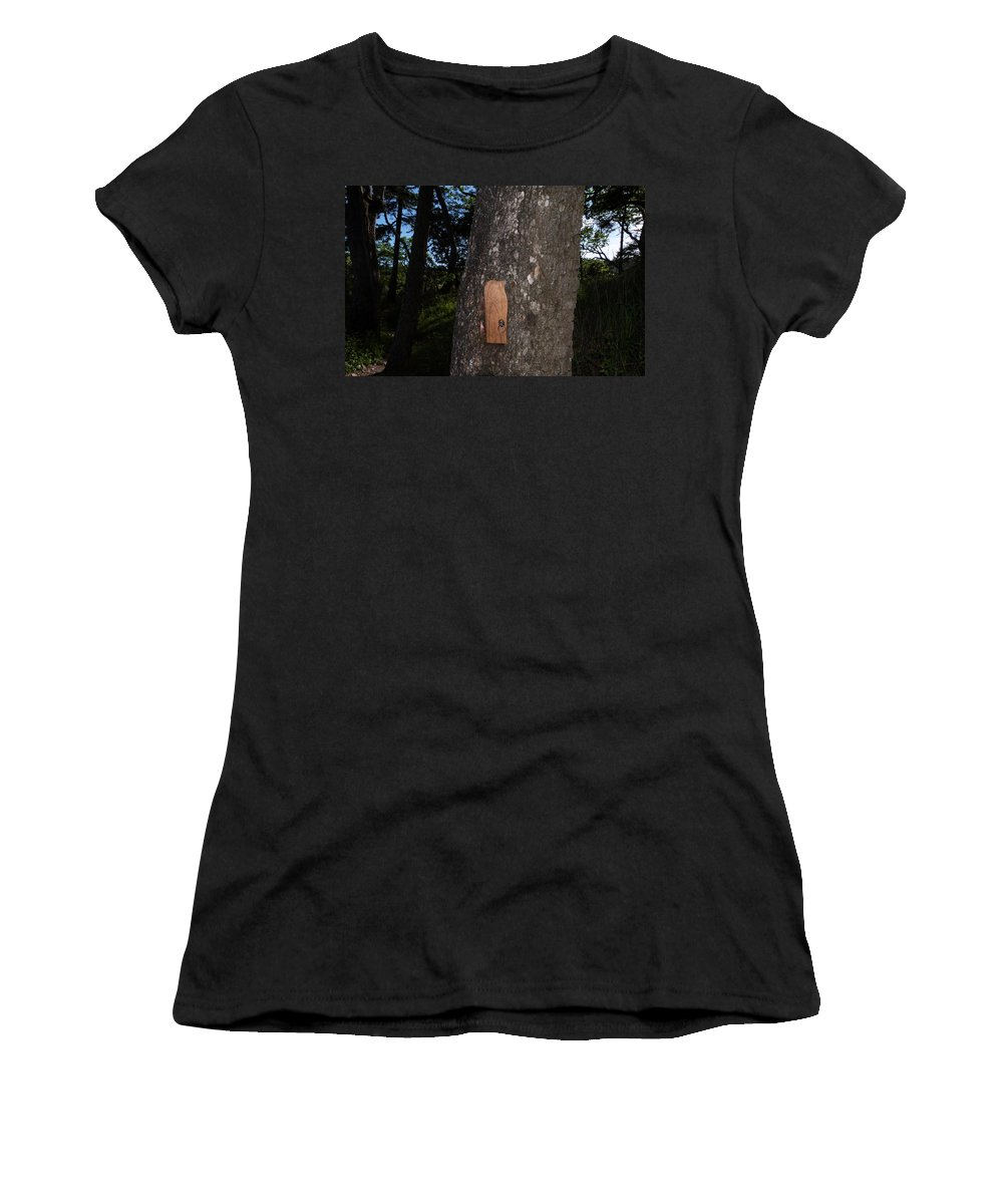 Pipers Lagoon Park Women's T-Shirt (Athletic Fit) featuring the photograph 09-05-16 by Darrell MacIver