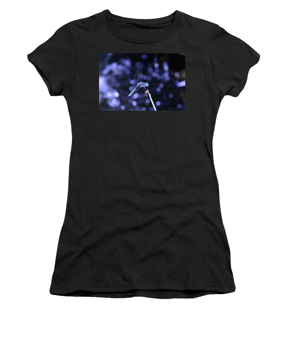 Blue Dasher Dragonfly Women's T-Shirt featuring the photograph A Dragonfly by Raymond Salani III