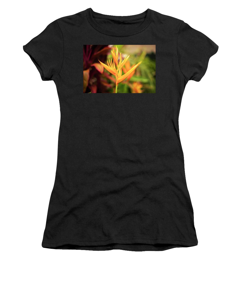 Abstract Women's T-Shirt (Athletic Fit) featuring the photograph Bird Of Paradise Plant In The Garden. by Rob D