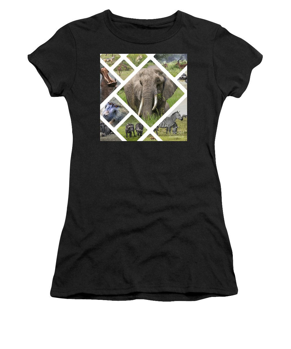 Outdoor Women's T-Shirt (Athletic Fit) featuring the photograph Collage Of Animals From Tanzania by Mariusz Prusaczyk
