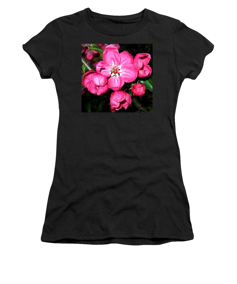 Blossoms Women's T-Shirt (Athletic Fit) featuring the photograph Crab Apple Blossoms by Will Borden