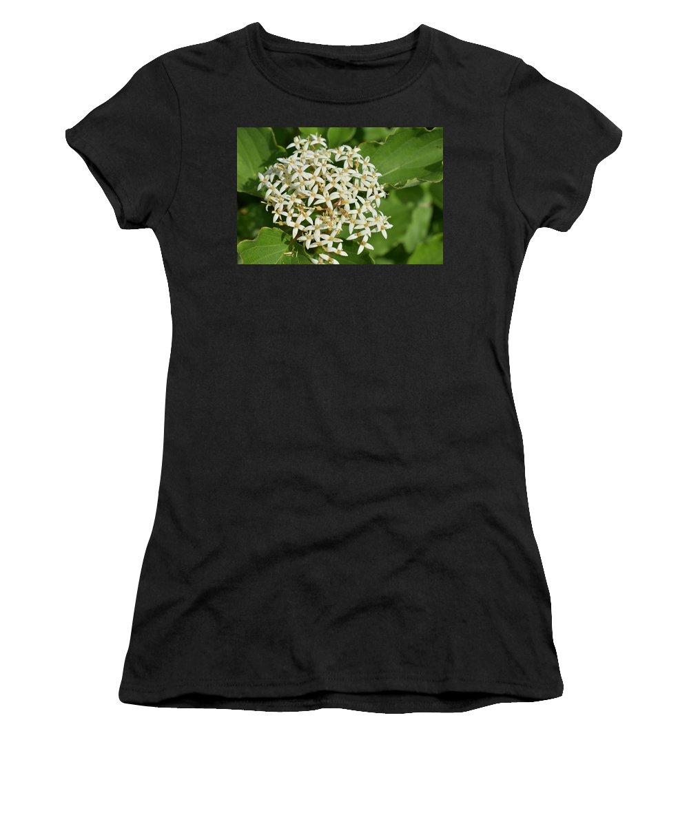Flowers Women's T-Shirt featuring the photograph Flowers by Naga Ikkurthi