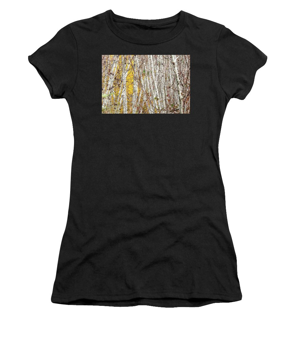 Usa Women's T-Shirt (Athletic Fit) featuring the photograph Grove 2 by John Whitmarsh