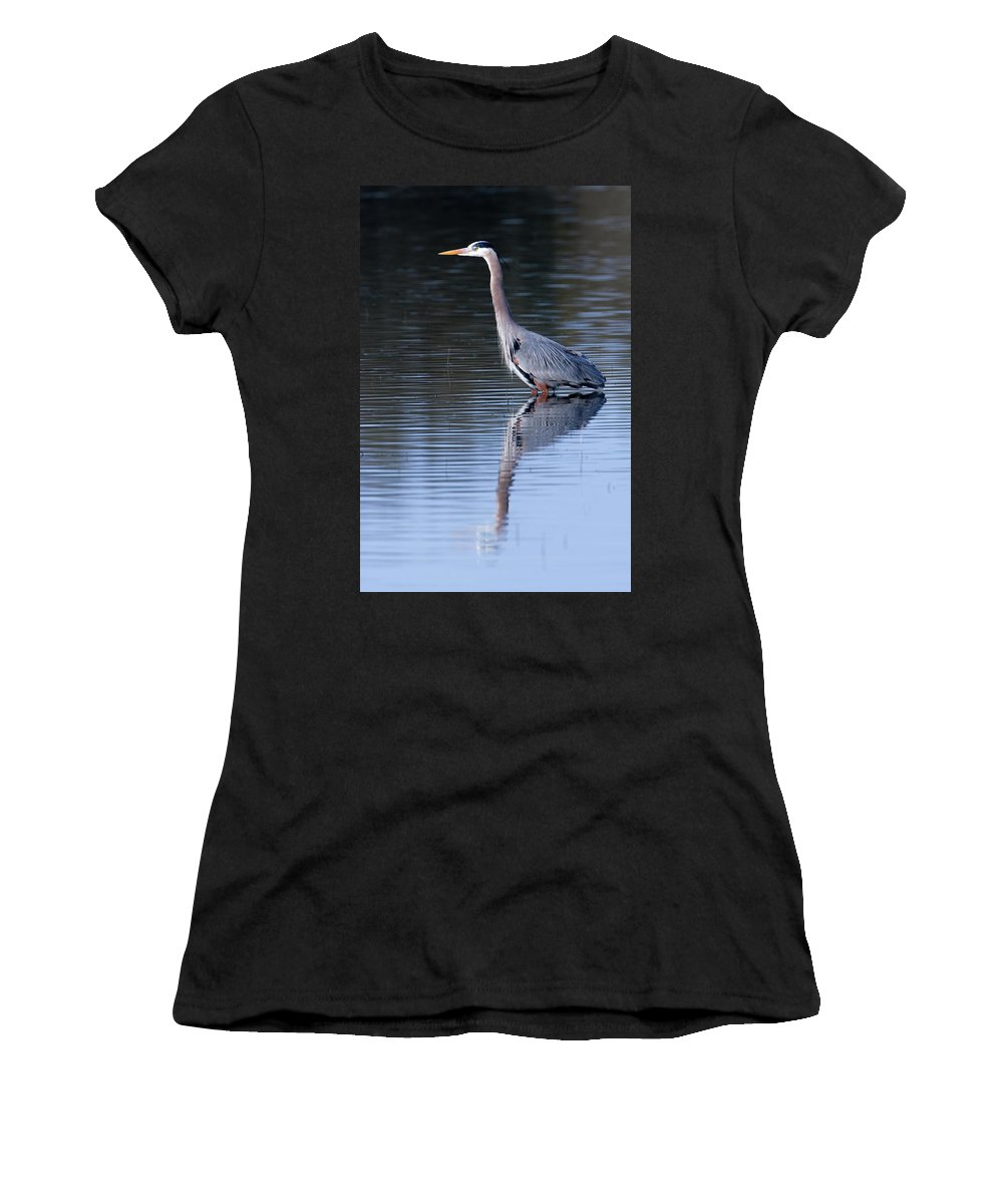Great Blue Heron Women's T-Shirt (Athletic Fit) featuring the photograph Heron Reflection by Randall Ingalls