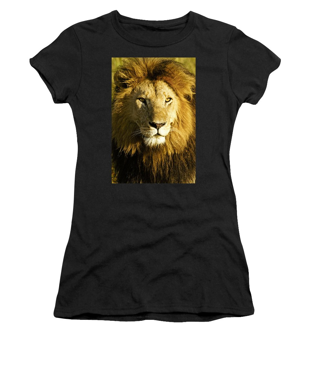 Lion Women's T-Shirt featuring the photograph His Royal Highness by Michele Burgess