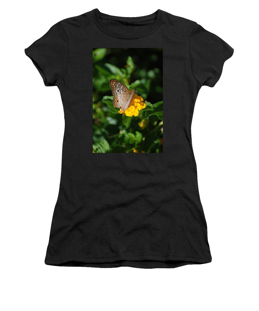 Butterfly Women's T-Shirt featuring the photograph Landed by Rob Hans