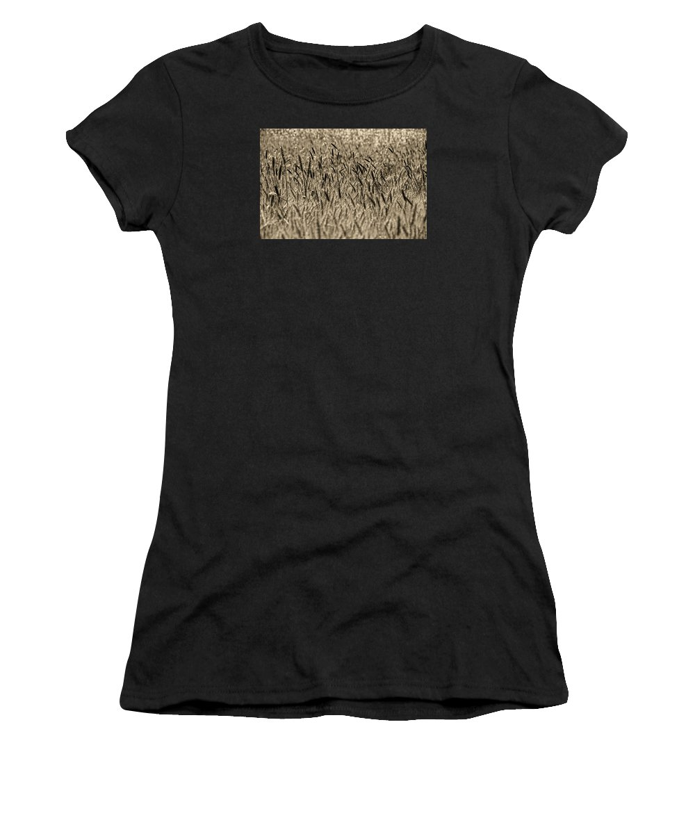 Women's T-Shirt (Athletic Fit) featuring the photograph Harvest Time by Deb Cohen