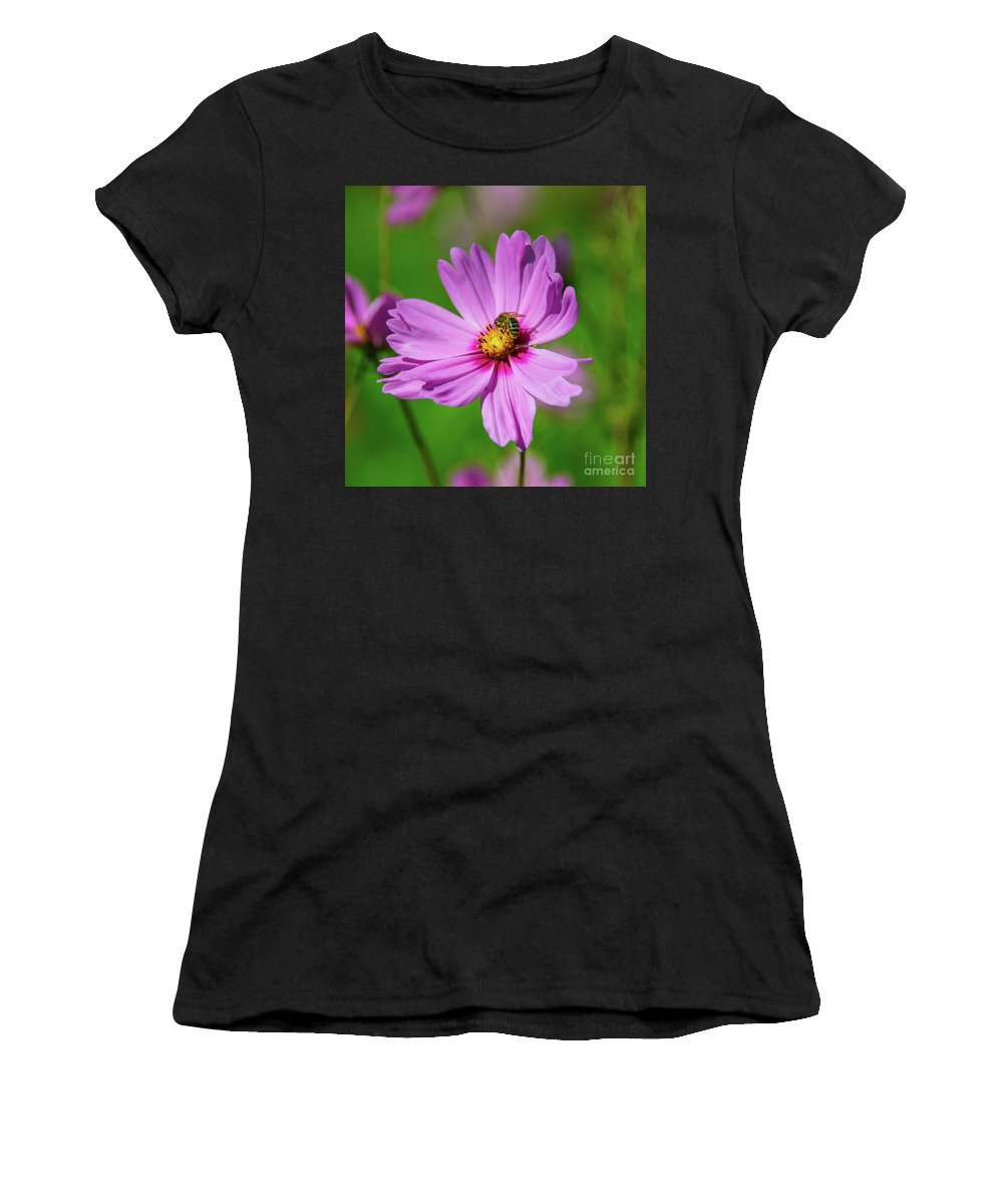 Cosmos Women's T-Shirt (Athletic Fit) featuring the photograph Pollination by Rob Hawkins