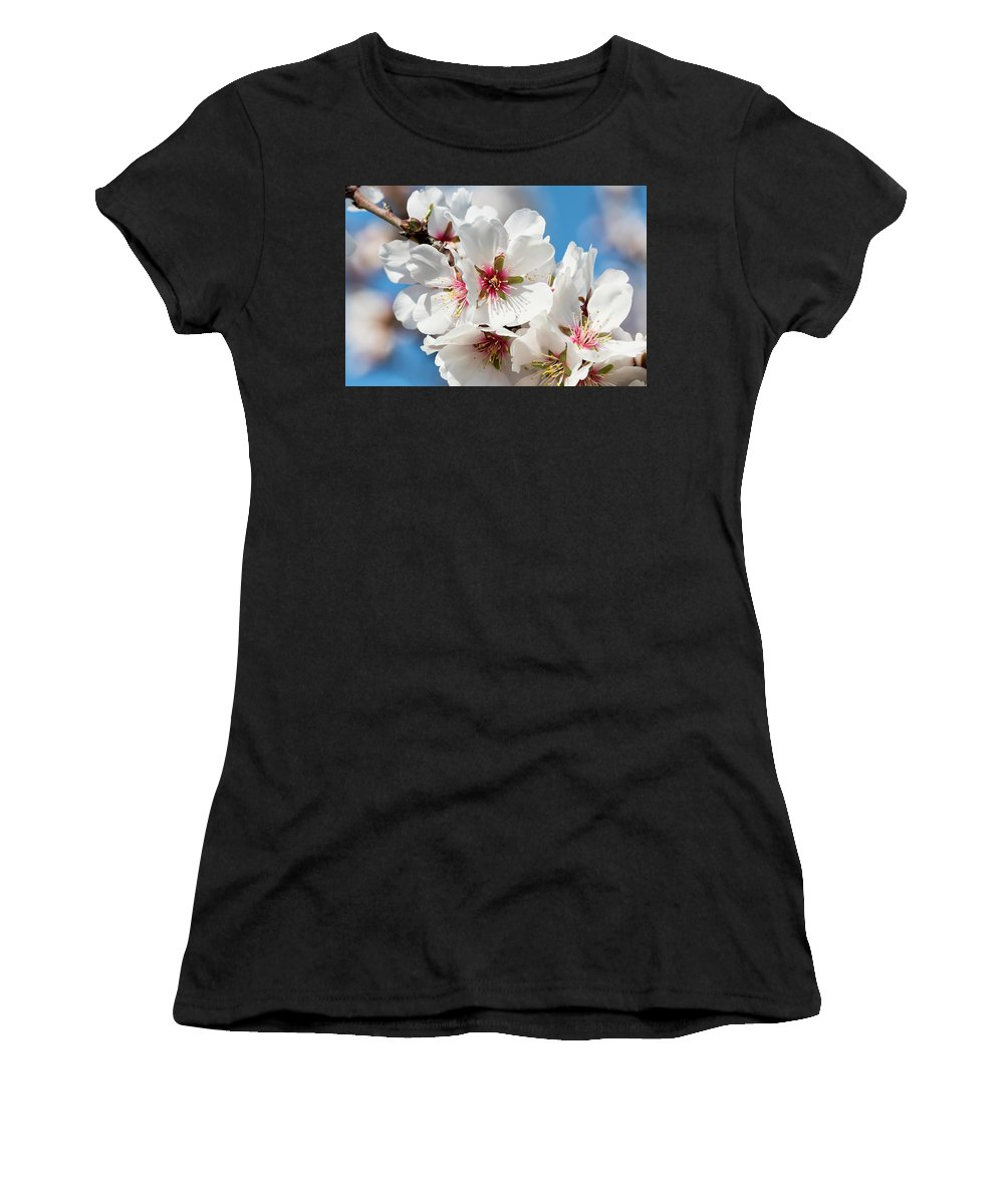 Women's T-Shirt featuring the photograph Spring Blossoms by Doug Holck