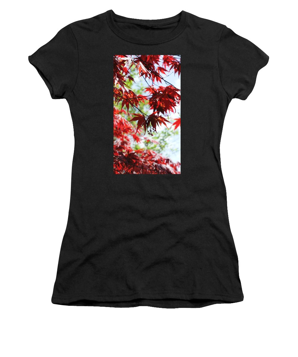 Spring. Leaves. Garden. Field. Flowers. Plants. Flora. Countryside. Landscape. Woodland. Women's T-Shirt featuring the photograph Spring Xxv by Nicholas Rainsford
