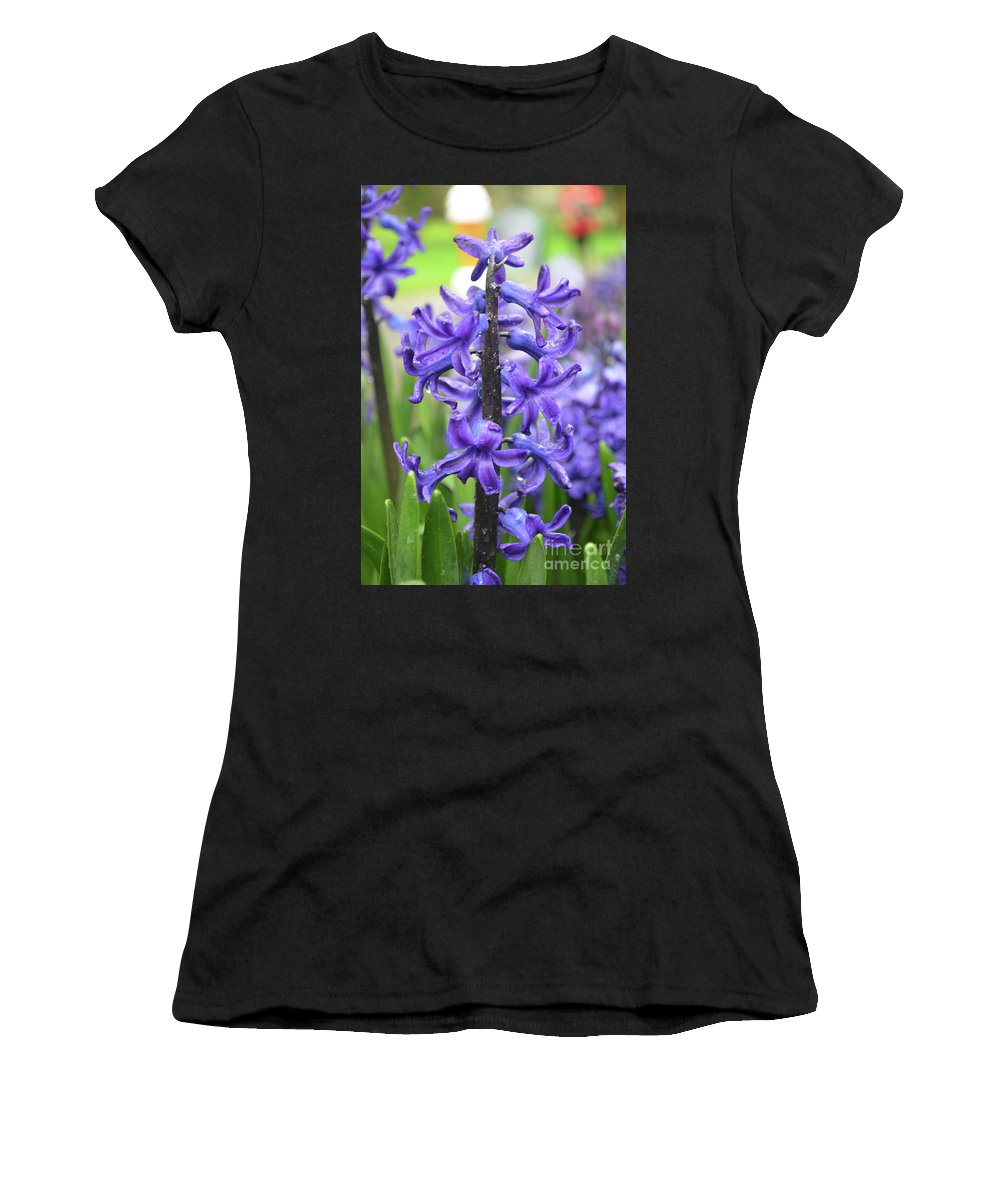 Hyacinth Women's T-Shirt (Athletic Fit) featuring the photograph Spring Time With Blooming Hyacinth Flowers In A Garden by DejaVu Designs