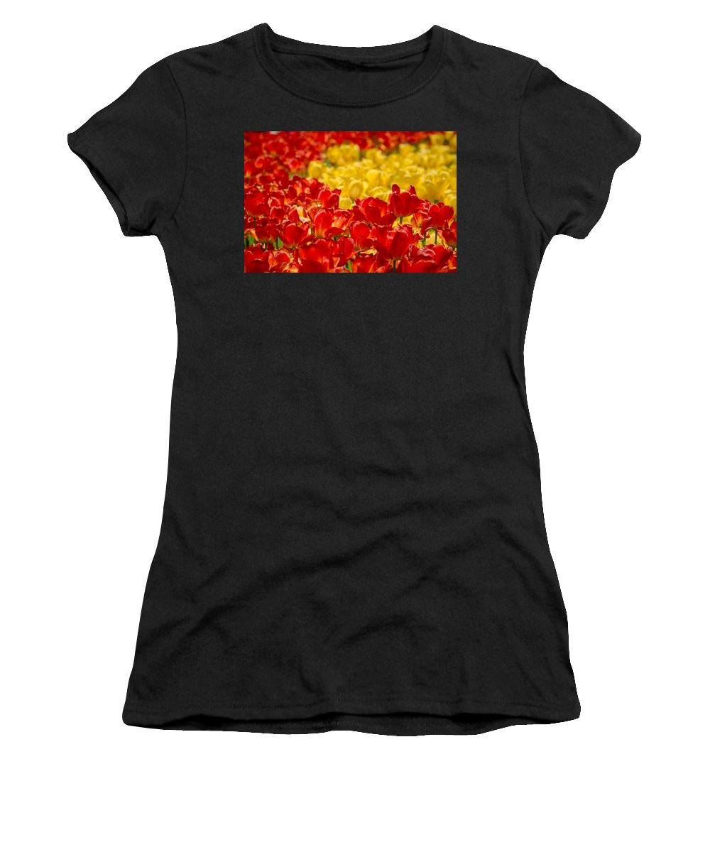Canada Women's T-Shirt featuring the photograph Tulips At Ottawa Tulips Festival by Aqnus Febriyant