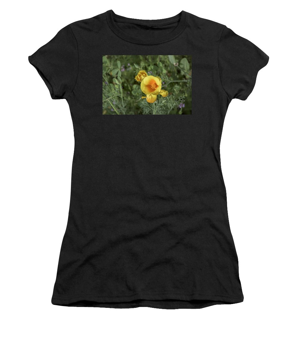 California Women's T-Shirt featuring the photograph Yellow And Orange Poppy by Jim Thompson