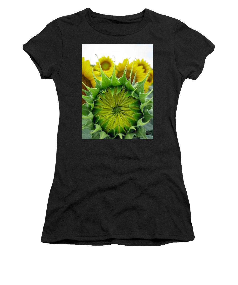 Sunflwoers Women's T-Shirt (Athletic Fit) featuring the photograph Sunflower Series by Amanda Barcon