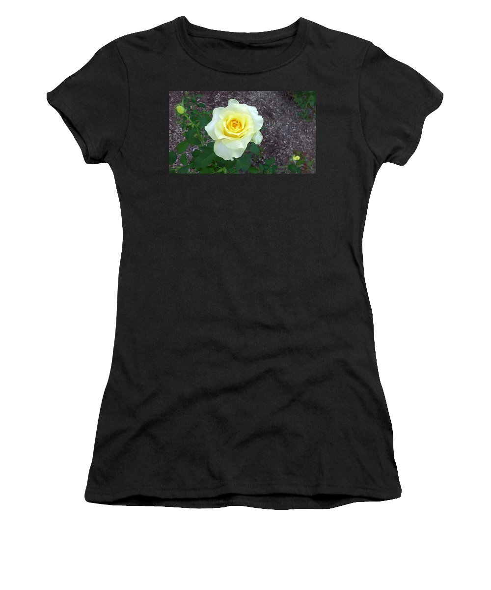 Australia Women's T-Shirt (Athletic Fit) featuring the photograph Australia - Yellow Rose Flower by Jeffrey Shaw
