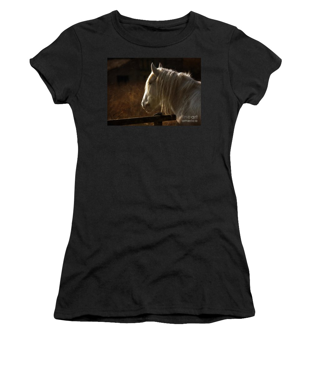Horse Women's T-Shirt (Athletic Fit) featuring the photograph Horse Portrait by Angel Ciesniarska