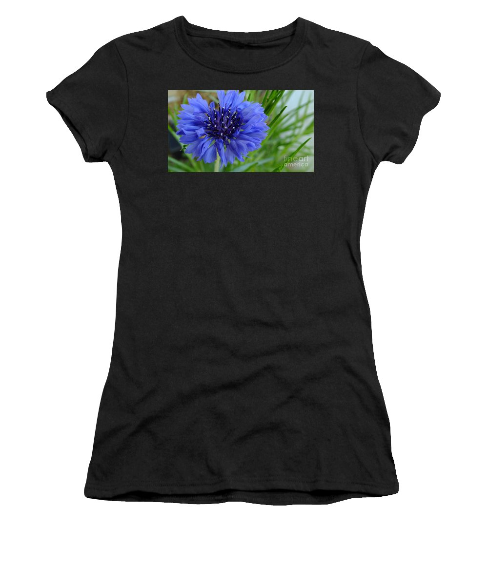 Tall Women's T-Shirt featuring the photograph Centaurea Cyanus 2 by Chandra Nyleen