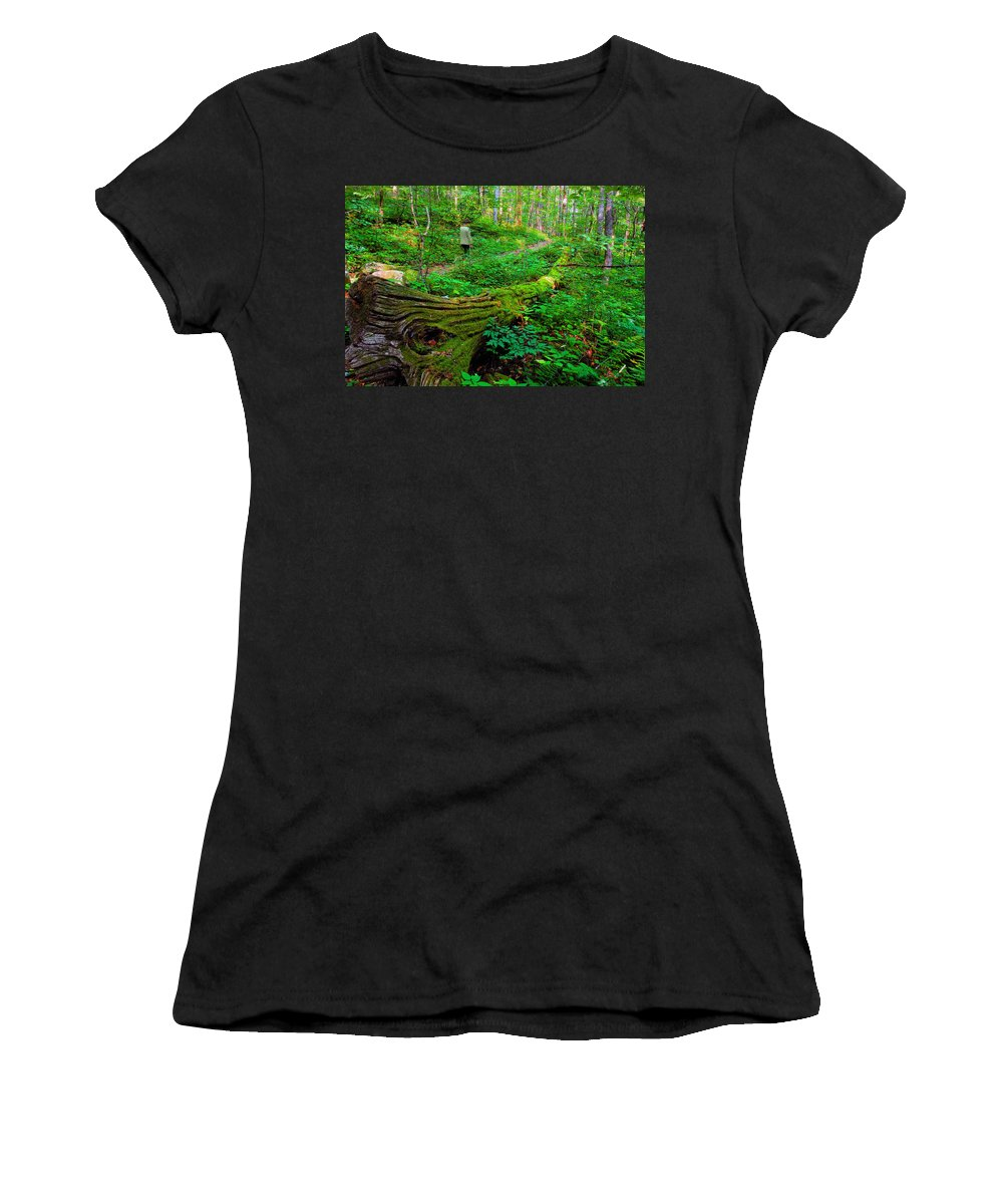 Hiking Women's T-Shirt (Athletic Fit) featuring the painting A Forest Stroll by David Lee Thompson
