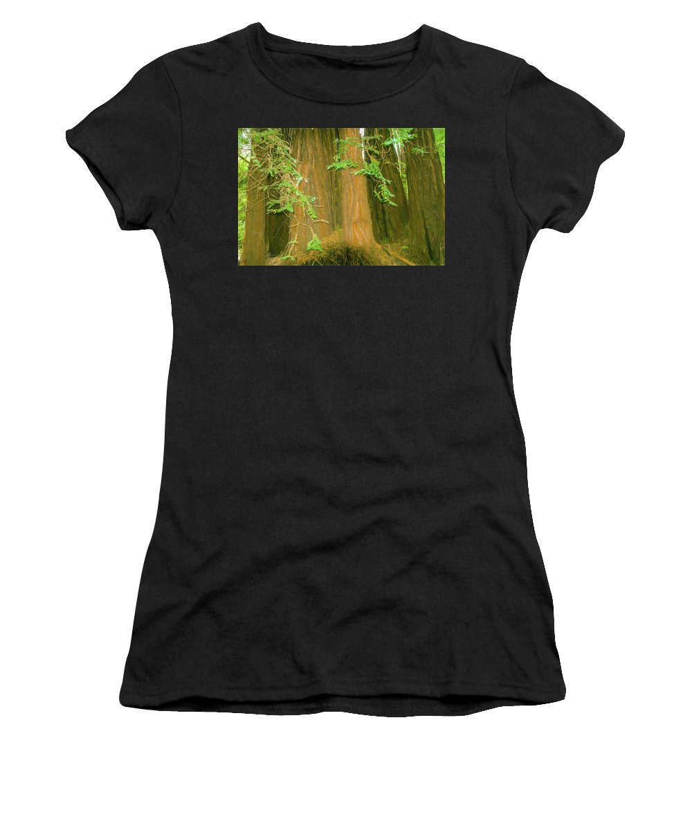 (sequoia Sempervirens) Women's T-Shirt (Athletic Fit) featuring the photograph A Group Giant Redwood Trees In Muir Woods,california. by Rusty R Smith