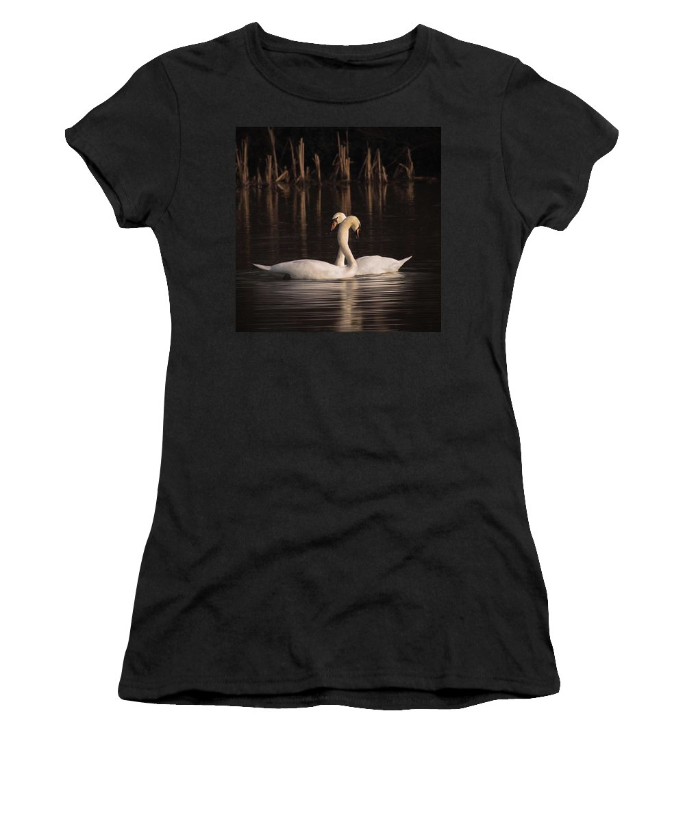 Nuts_about_birds Women's T-Shirt featuring the photograph A Painting Of A Pair Of Mute Swans by John Edwards