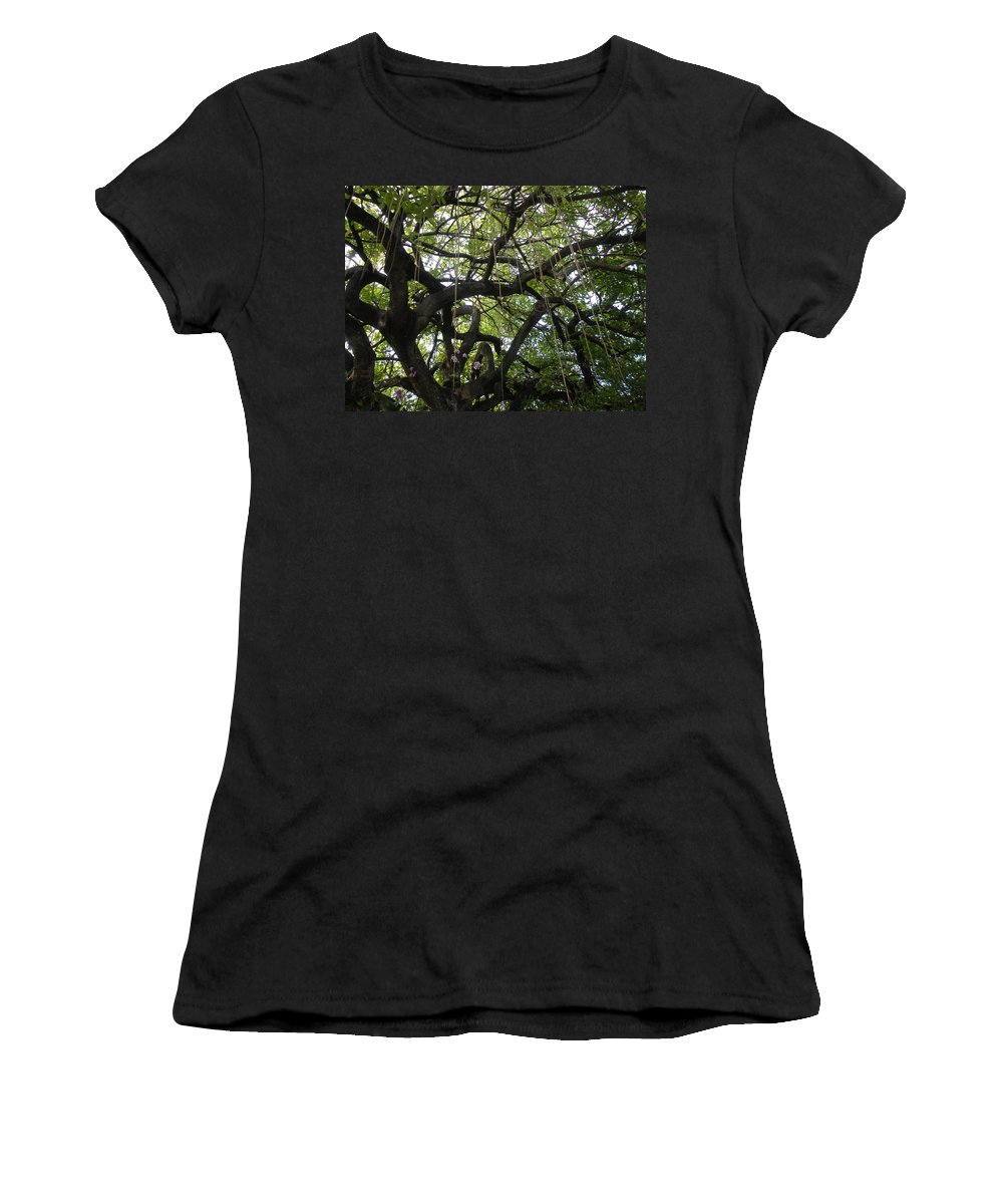 Trees Women's T-Shirt (Athletic Fit) featuring the photograph Aerial Network II by Maria Bonnier-Perez
