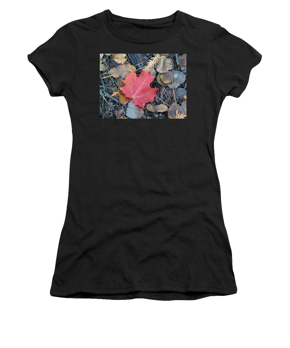 Leaves Women's T-Shirt (Athletic Fit) featuring the photograph Alone In The Woods by Kelly Mezzapelle