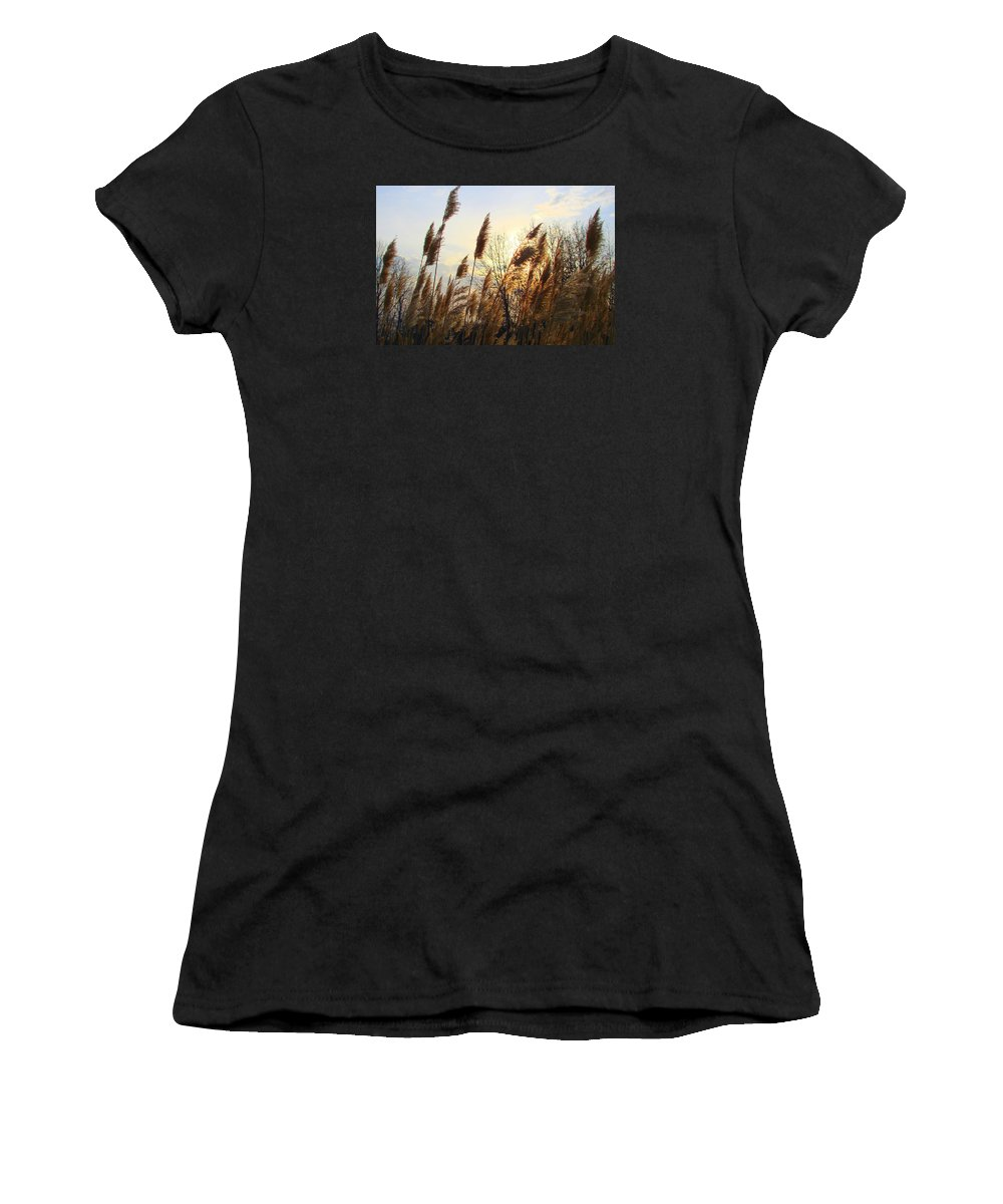 Pampasgrass Women's T-Shirt (Athletic Fit) featuring the photograph Amber Waves Of Pampas Grass by J R Seymour