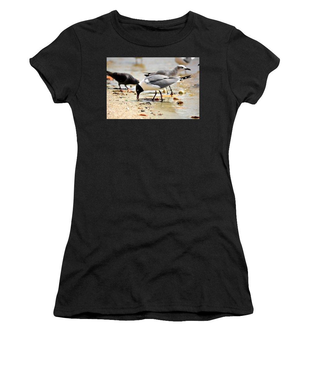 American-oyster-catcher Women's T-Shirt featuring the photograph American Oyster Catcher by Reva Steenbergen