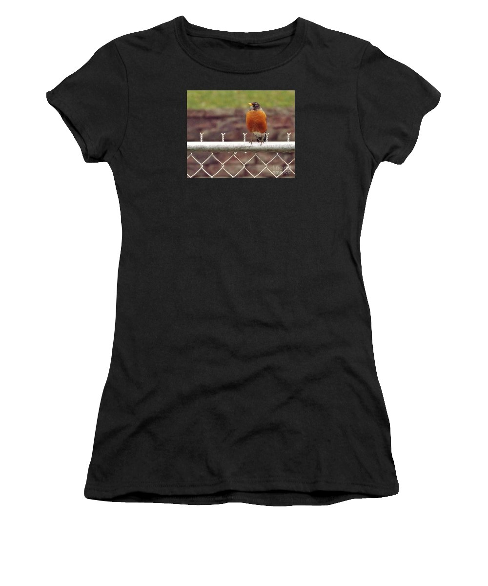 Bird Women's T-Shirt (Athletic Fit) featuring the photograph American Robin In Spring     March      Indiana by Rory Cubel