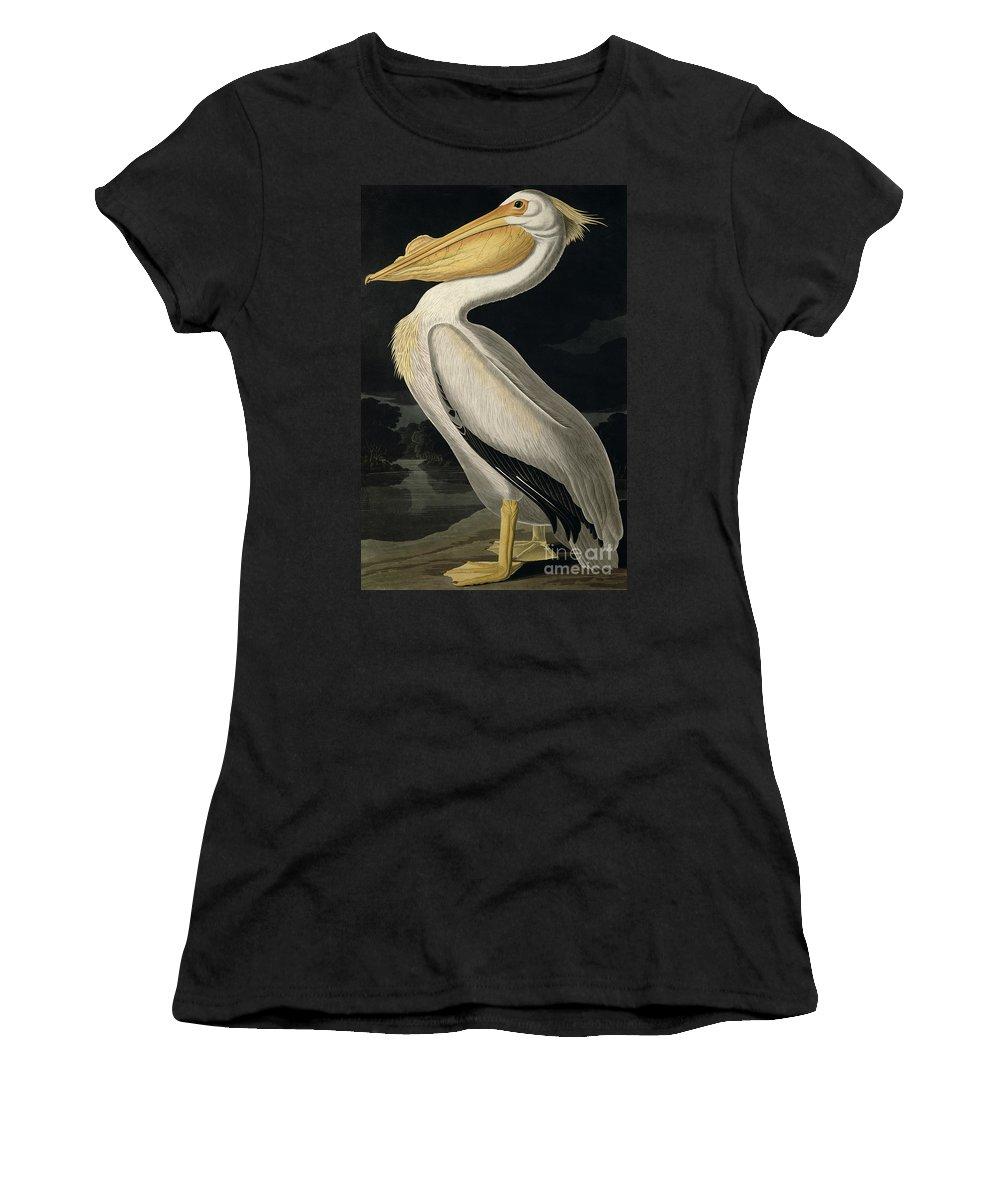 American White Pelican Women's T-Shirt featuring the painting American White Pelican by John James Audubon