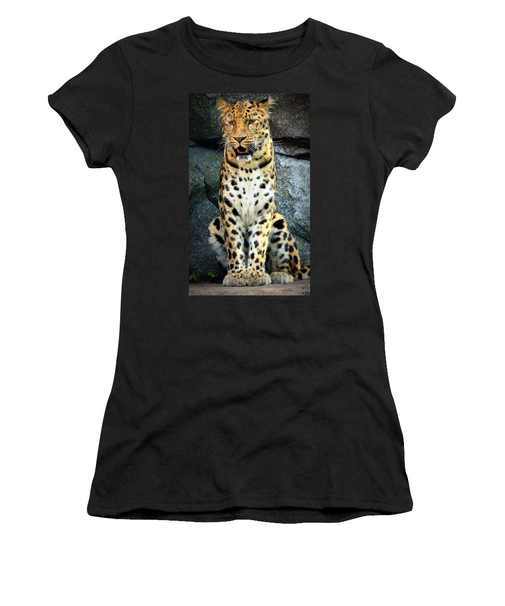 Amur Leopard Women's T-Shirt featuring the photograph Amur Lepard I Hear Something by John Olson