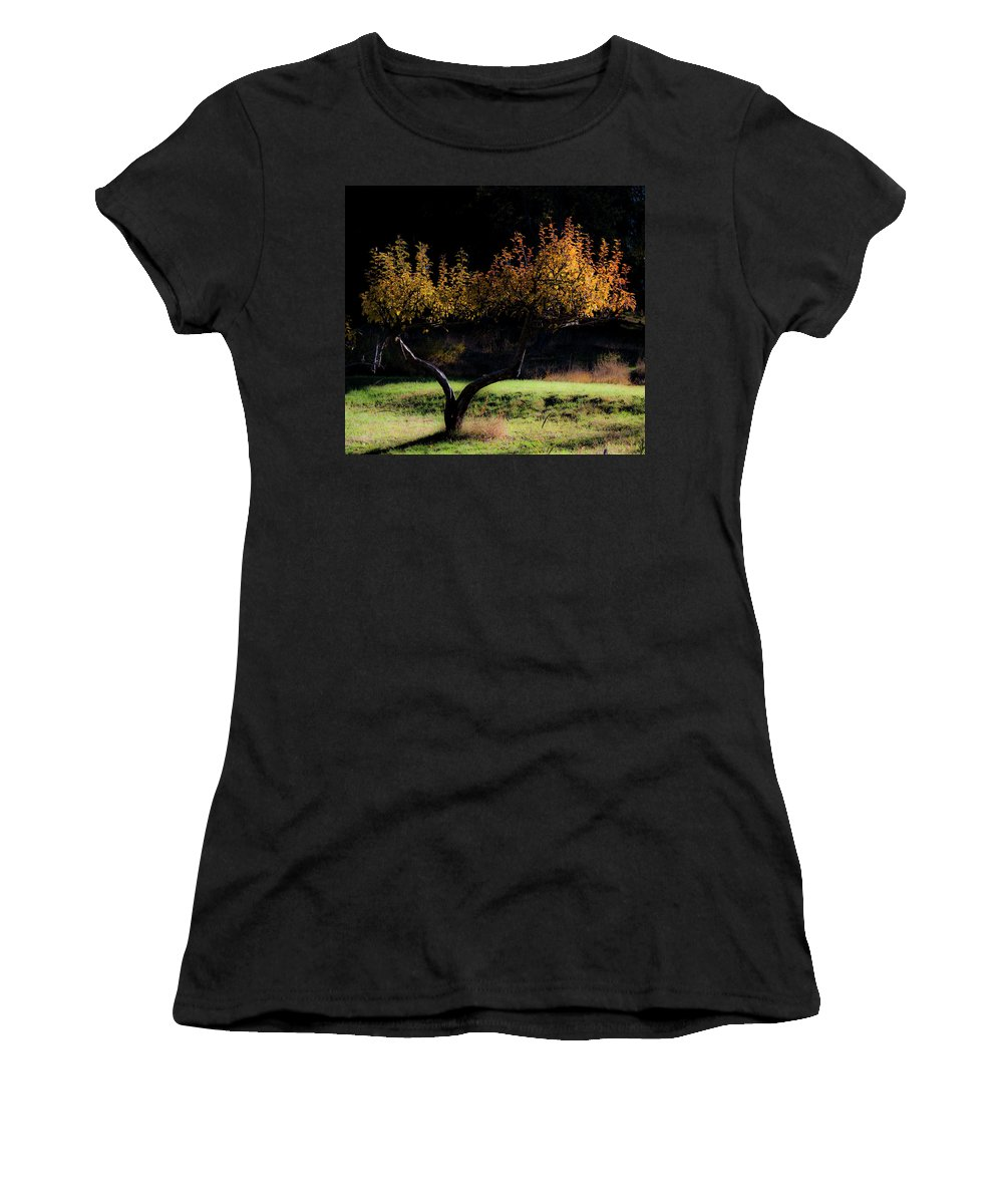 Scenic Women's T-Shirt (Athletic Fit) featuring the photograph An Idaho Tree by Lee Santa