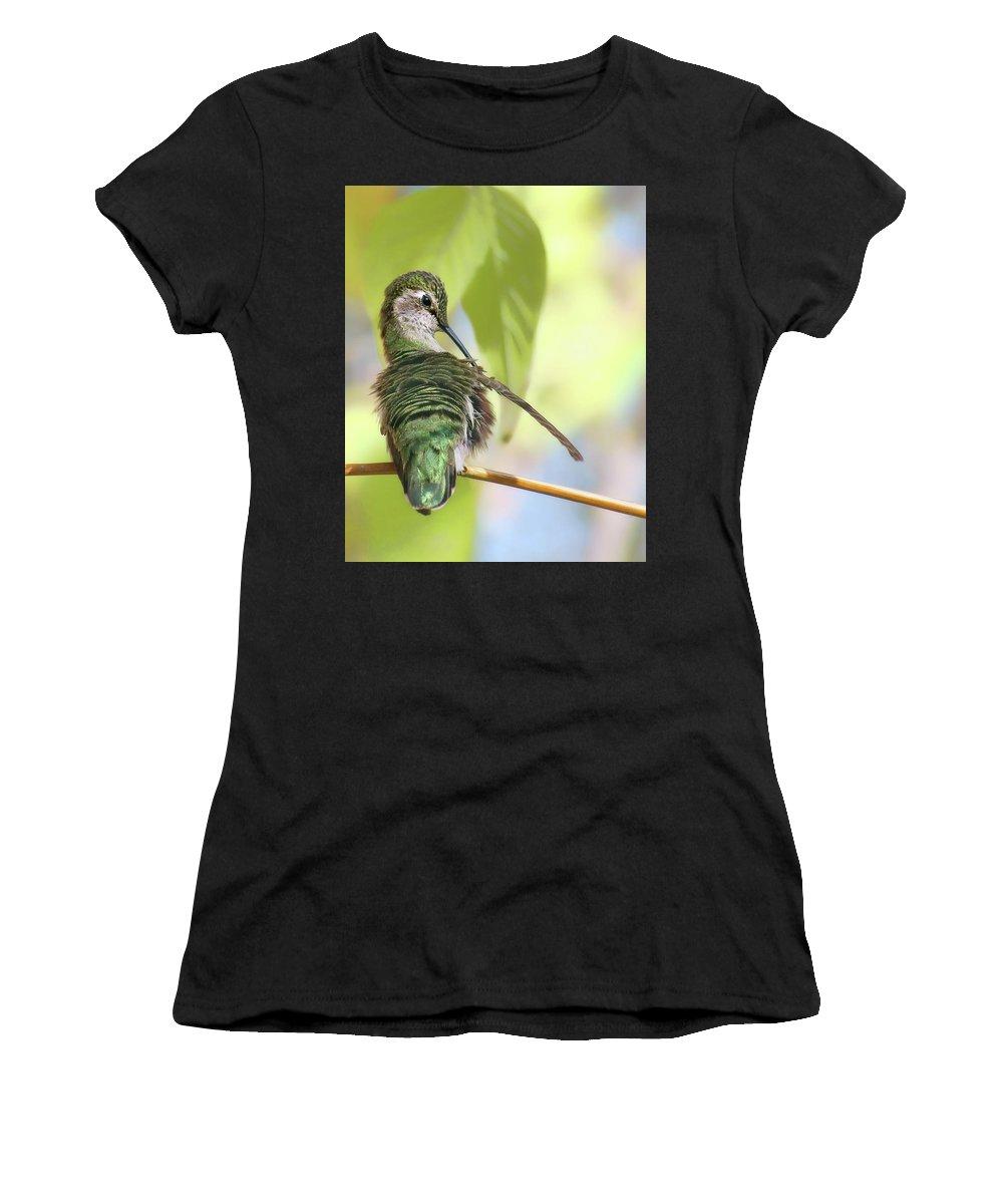 Avian Women's T-Shirts