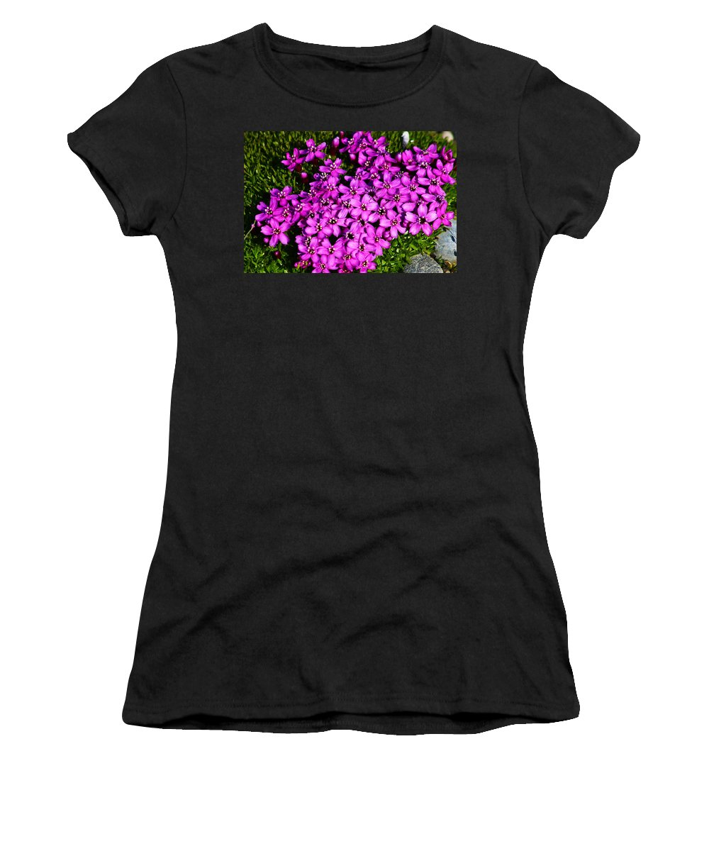Arctic Women's T-Shirt (Athletic Fit) featuring the photograph Arctic Wild Flowers by Anthony Jones