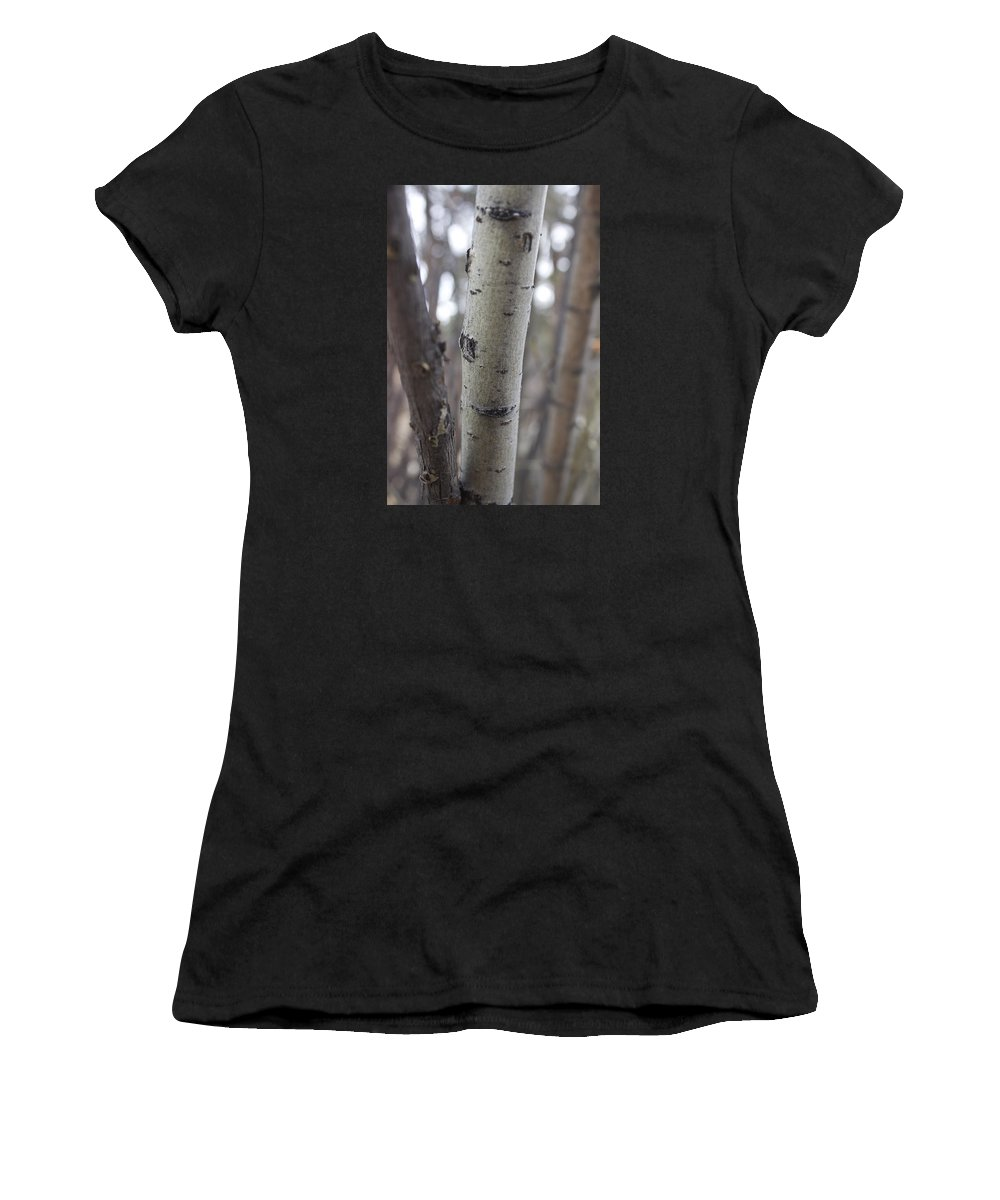 Ash Women's T-Shirt (Athletic Fit) featuring the photograph Aspen Bark Detail by Brent Baum