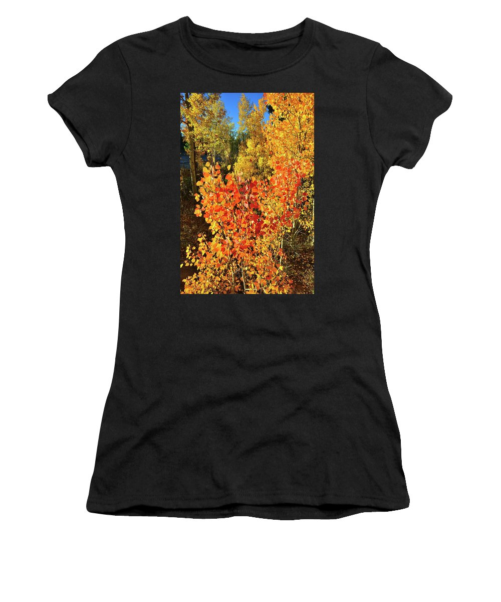 Women's T-Shirt (Athletic Fit) featuring the photograph Aspen Colors In Dillon Colorado by Ray Mathis