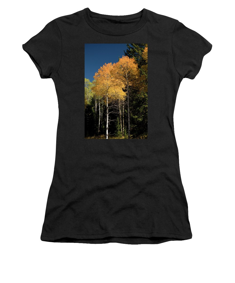 Grand Teton Women's T-Shirt (Athletic Fit) featuring the photograph Aspens And Sky by Steve Stuller