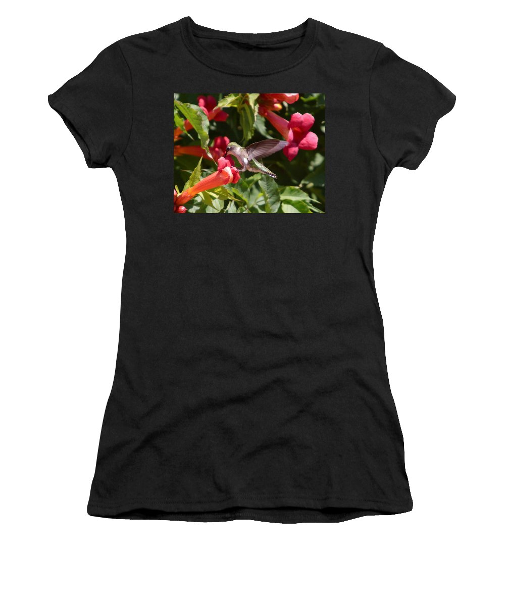 Humming Bird Women's T-Shirt featuring the photograph Asweet Tooth by Robert Pearson