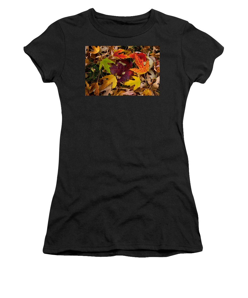 Leaves Women's T-Shirt (Athletic Fit) featuring the photograph Autumn Leaves by James BO Insogna