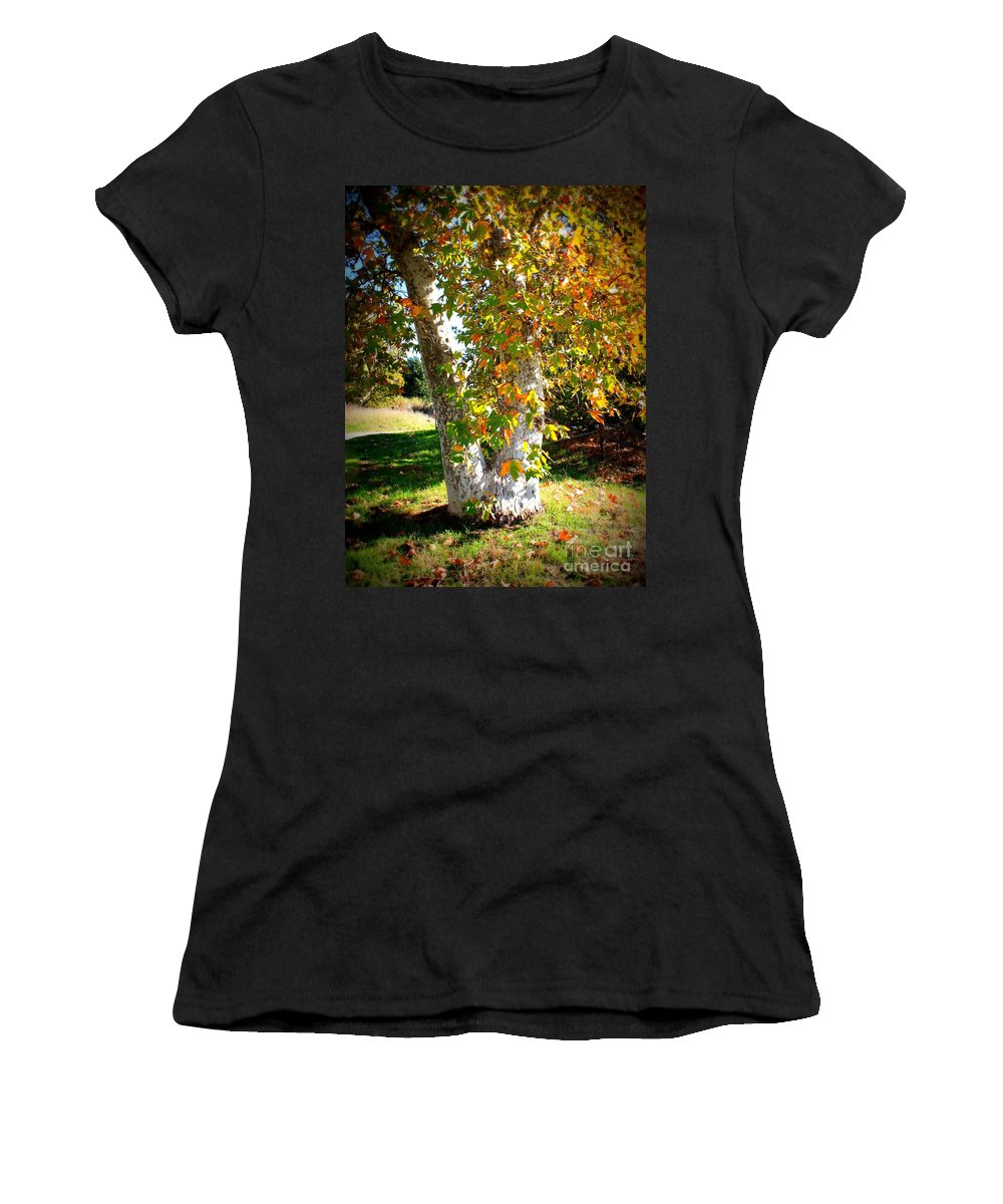 Autumn Tree Women's T-Shirt featuring the photograph Autumn Sycamore Tree by Carol Groenen