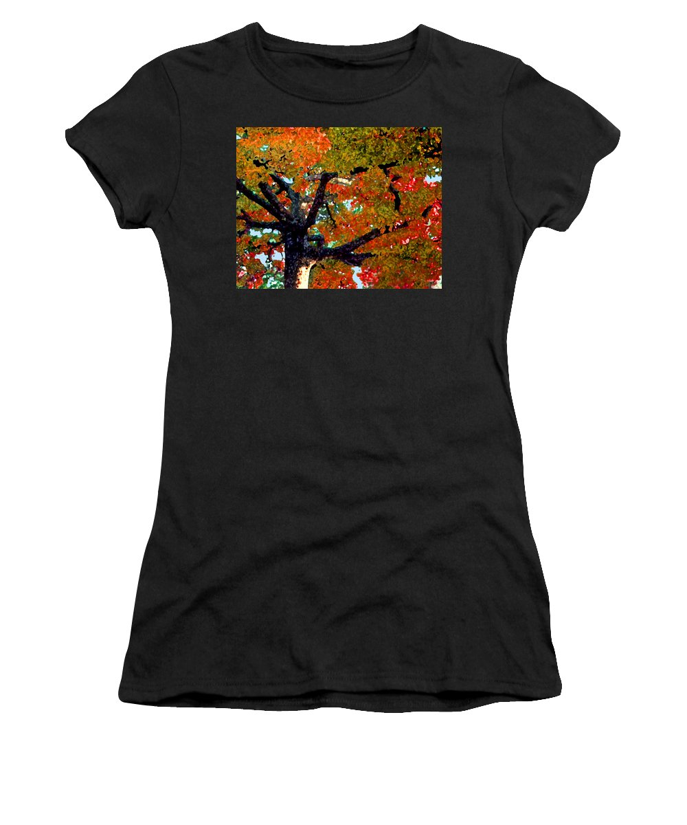 Fall Women's T-Shirt (Athletic Fit) featuring the photograph Autumn Tree by Steve Karol