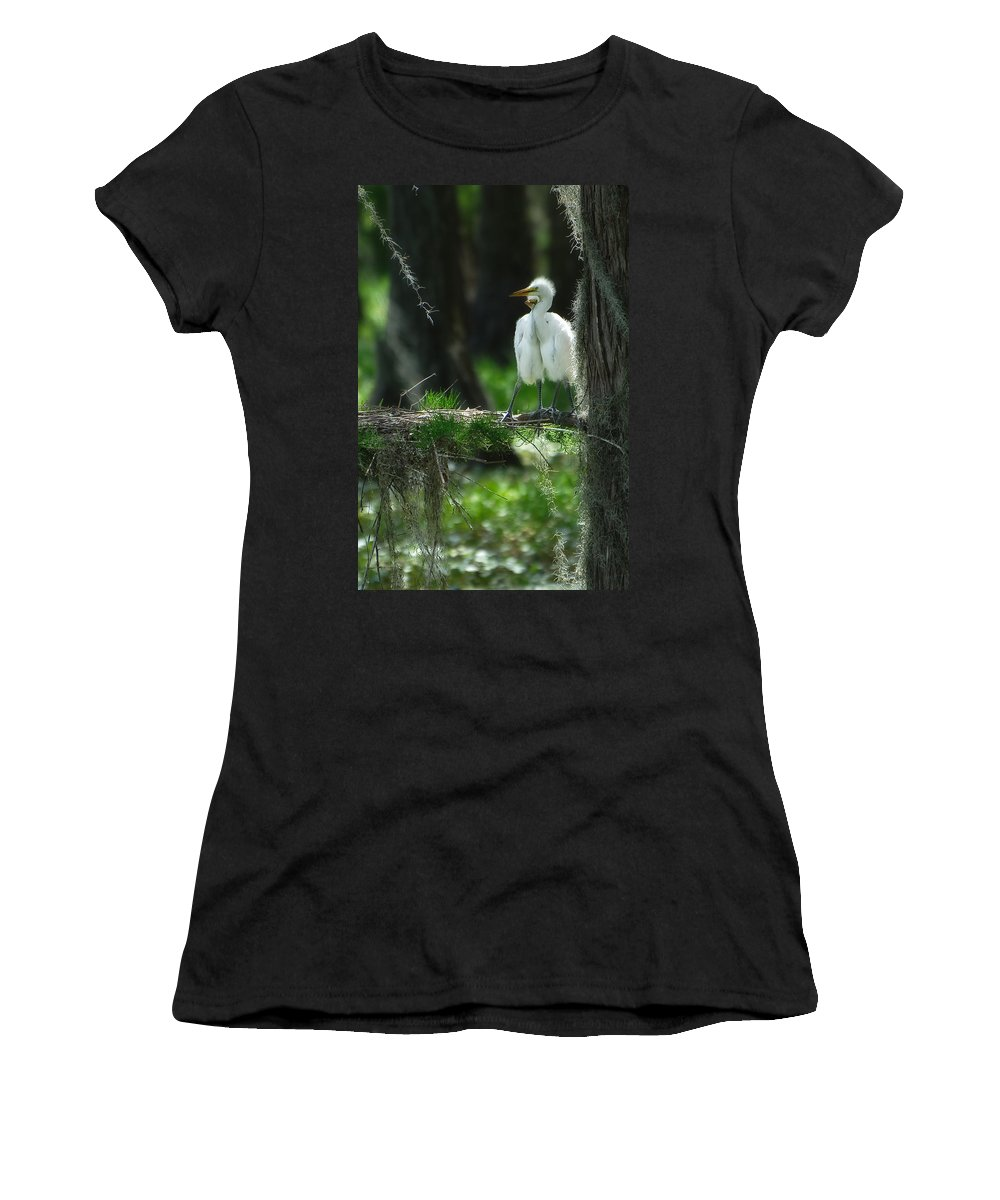 Egret Women's T-Shirt featuring the photograph Baby Great Egrets With Nest by Rich Leighton