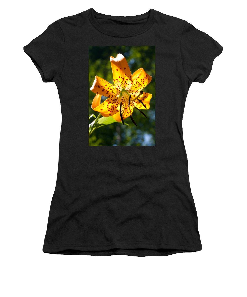 Flower Women's T-Shirt featuring the photograph Back-lit Yellow Tiger Lily by John Haldane